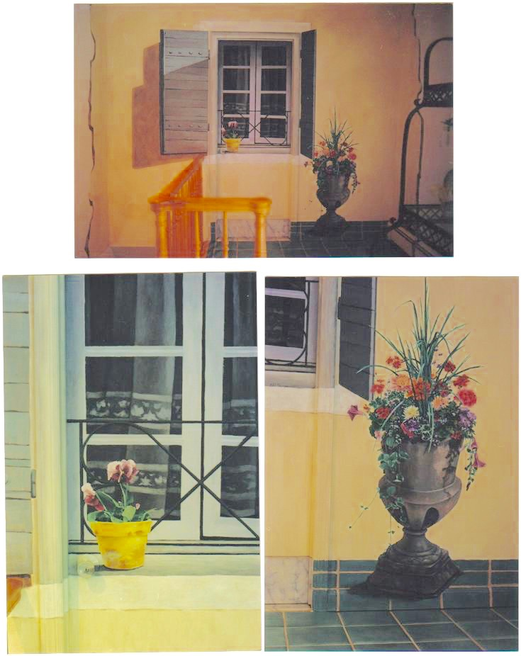 French Country Mural - French Country Window with Shutters